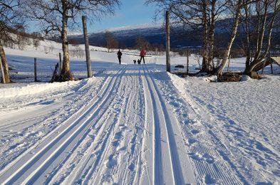 Det er enkelt å komme seg til et skispor fra sentrum. Gå til Hovden, og vips har du skispor å følge i mange mil. Foto: Kristin Riise