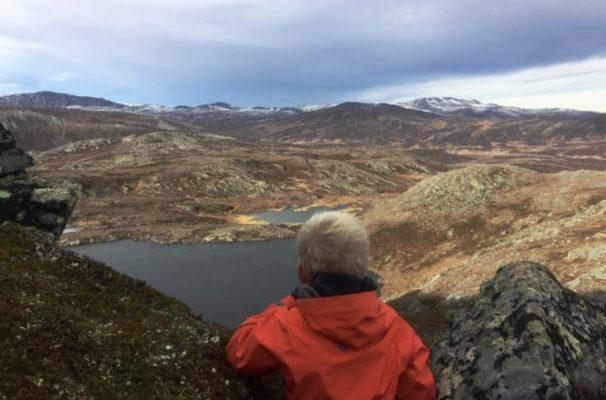 Utsikt fra Nonshøa. Foto: Oddveig Torve
